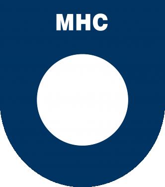 Hockeyclub Udenhout